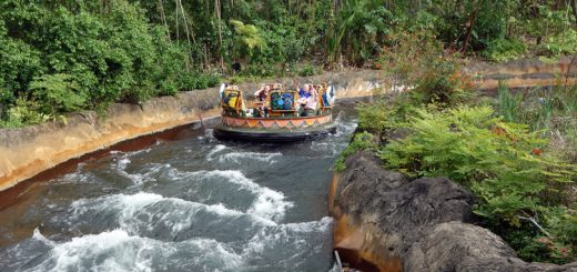 Kali River Rapids - Animal Kingdom